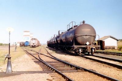C,N. Railway Yards, Dawson Creek, BC, June 1981
