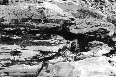 River Banks, Julius Dammen Peace River Area, July 28, 1940