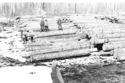 Ellingson Sawmill, log pile North Rolla, BC ca 1938