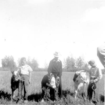 4-H Achievement Day , Warren Studley, Bob Dilworth, and Keith Studley Sunrise Valley, BC 1955